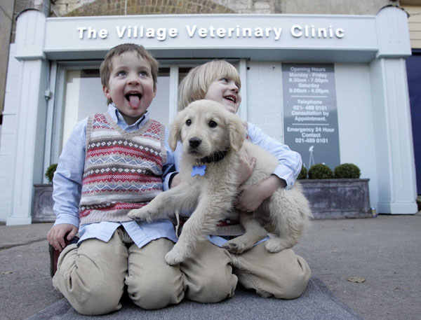Max Ned and Marley The Village Vet Douglas